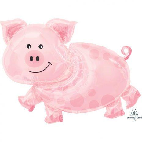 11062-pig