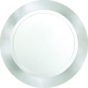 Premium Silver and Clear Dinner Plates